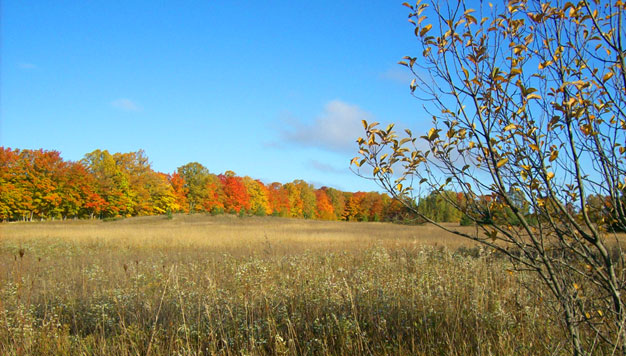 Door_County_fall_vista