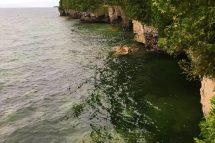 shorelineofniagara